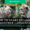 How To Start Speaking Another Language When You're An Introvert (And You Don't Speak At All)